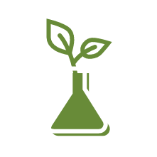 An illustrated icon of plant leaves emerging from a scientific beaker.