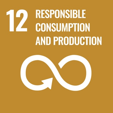 Responsible Consumption and Production square graphic